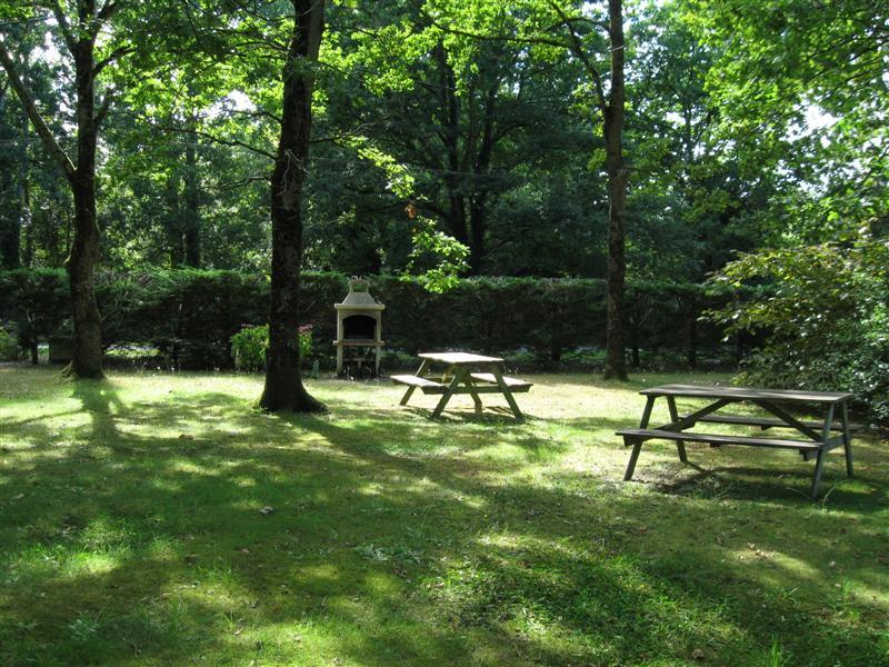 Tables de jardin sous les chênes